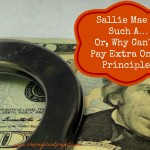 Sallie Mae is Such A…Or, Why Can't I Pay Extra On My Principle?