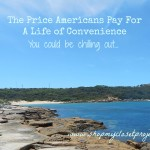 The Price Americans Pay For A Life Of Convenience