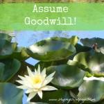 Assume Goodwill….