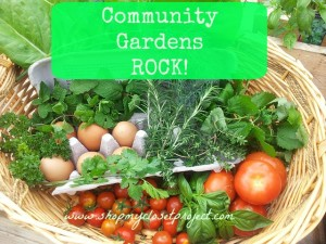 Community Gardens ROCK! I Have One and You Should Get One Too