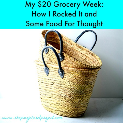 My $20 Dollar Grocery Week: How I Rocked it and Some Food For Thought