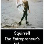 Squirrel! The Entrepreneur's Dilemma