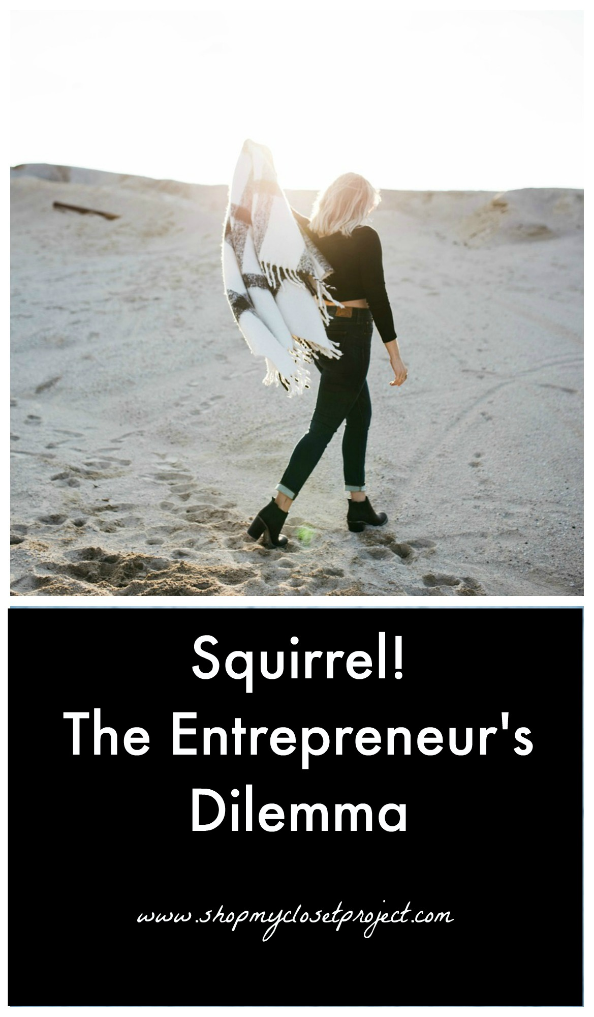 Squirrel! The Entrepreneur's Dilemma