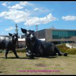 Type-A West Blogging Conference: Denver